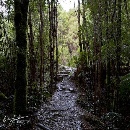 Tasmania Walk 3