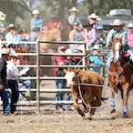Great Western APRA Rodeo 2017 - Slack Session