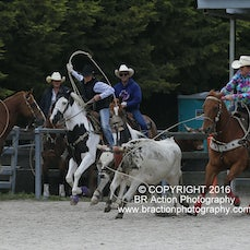 Team Roping - Saturday