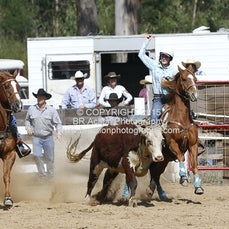 Buchan APRA Rodeo 2015 - Steer Undecorating - Sect 1