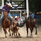 Myrtleford APRA Rodeo 2016 - Slack Session