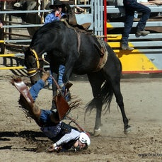 Great Western Rodeo APRA 2008