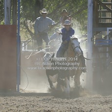 Breakaway Roping - Afternoon - Sect 1