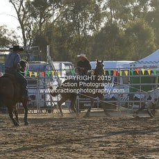 Finley Rodeo - Team Roping - Sect 1