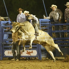 Finley Rodeo - Open Bull Ride - Sect 1