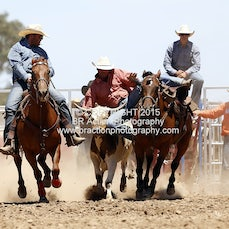 Beechworth Steer Wrestling - Slack 1