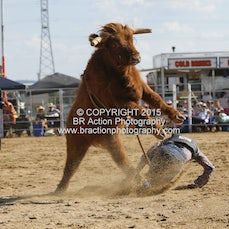 Wagga APRA 2015 - Junior Steer Ride