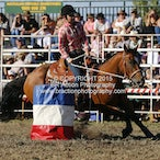 Ballarat APRA Rodeo 2015 - Local Events