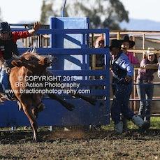 Ballarat - Junior Steer Ride - Sect 1