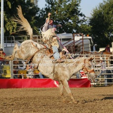 Whittlesea Rodeo - 2nd Div Saddle Bronc - Sect 1