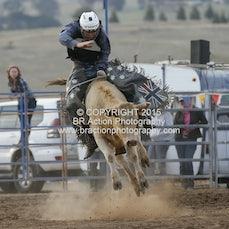 Merrijig APRA Rodeo 2015 - Local Steer Ride