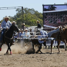 Chiltern APRA Rodeo 2015 - Steer Wrestling - Slack 1