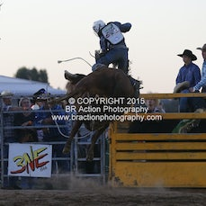 Chiltern APRA Rodeo 2015 - 2nd Div Bull Ride - Sect 2