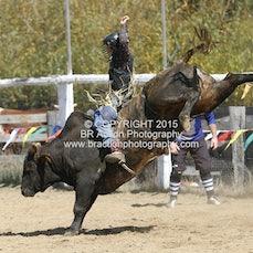 Buchan APRA Rodeo 2015 - Open Bull Ride - Sect 1
