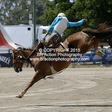 Warwick 2015 - 2nd Div Saddle Bronc - Sect 1
