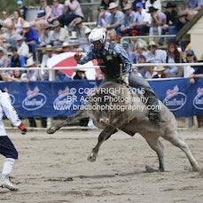 Warwick 2015 - Junior Steer Ride - Sect 1
