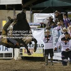 NFR 2015 - Round 2 - Bull Ride
