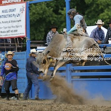 Bull Ride - Sect 1