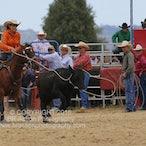 Wagga Wagga APRA Rodeo 2016 - Slack Session