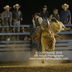 Ballarat APRA Rodeo 2016 - Performance Session