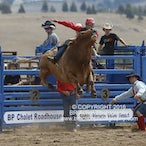 Merrijig APRA Rodeo 2016 - Slack Session