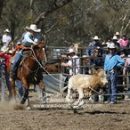 Great Western APRA Rodeo 2016 - Slack Session