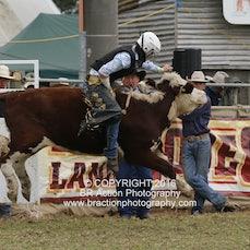 Junior Steer Ride