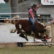 Open Steer Ride