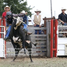 Open Bull Ride - Sect 1