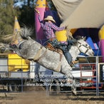Ettamogah APRA Rodeo 2016 - Performance Session