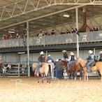 Trafalgar APRA Rodeo 2016