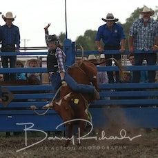 Junior Steer Ride - Sect 1