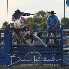 2nd Div Saddle Bronc - Sect 1  Reride