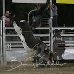 Whittlesea APRA Rodeo 2017 - Performance Session