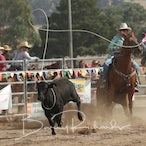 Merrijig APRA Rodeo 2017 - Slack Session