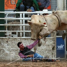 2nd Div Bull Ride - Sect 1