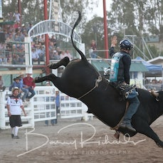 2nd Div Bull Ride - Sect 4