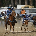 Buchan APRA Rodeo 2018 - Slack Session