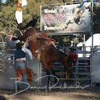Great Western APRA Rodeo 2018 - Performance