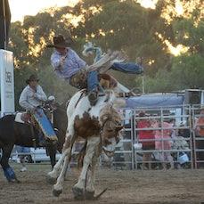 Finley Rodeo APRA  2013 - Finley NSW Jan 2013