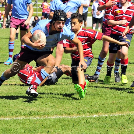 Chevalier Rugby 2015