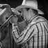 Cowboy Clermont,Qld