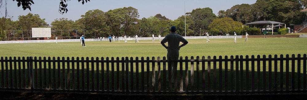 cricket-107