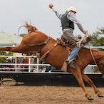 Goulburn Rodeo 15 Feb 2014