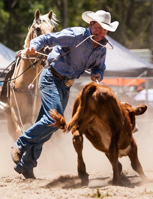 Picton Rodeo 030115 -121