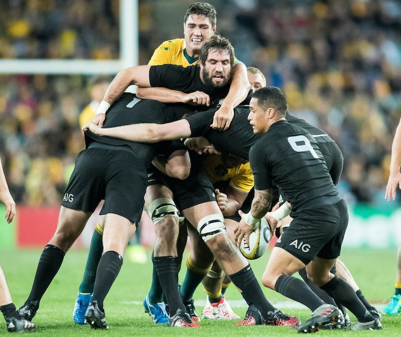 Wallabies v All Blacks 20816-30