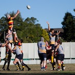 Hornsby Lions v Epping - 52-0 up at half-time, the lions eased to a 73-12 win over last-placed Epping.