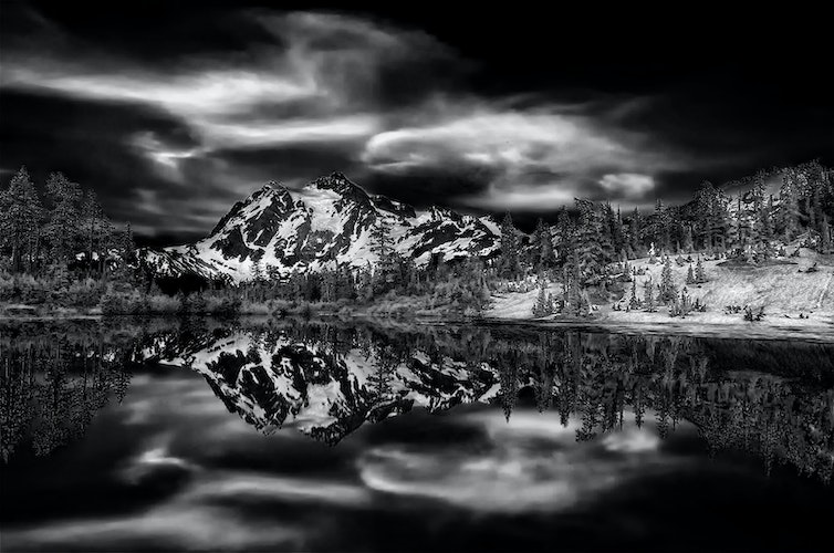 Lee Dygert~Monochrome~Just Picture~