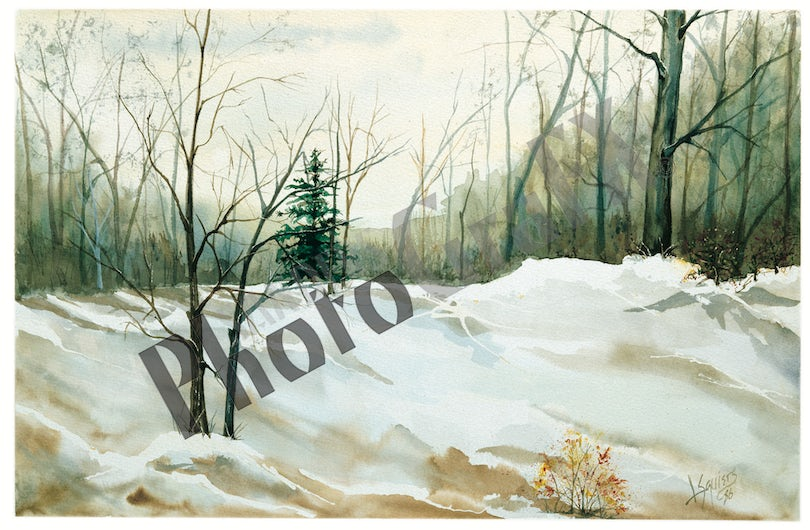 Winter Woodlands - Winter Woodlands is available in two sizes Full - 28x22 and Demi 24x18. This is the approximated image only size.
