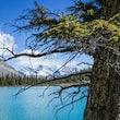 Canada - Stunning imagery of British Columbia and Alberta